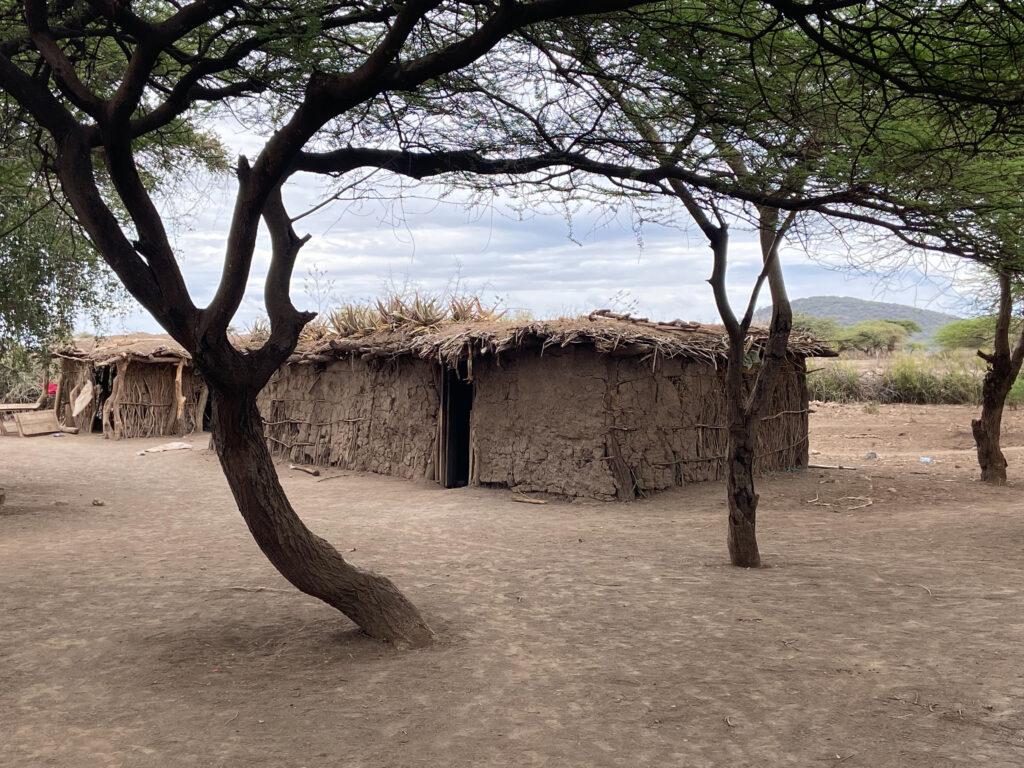 Tanzania Safari, Best Safari in Africa